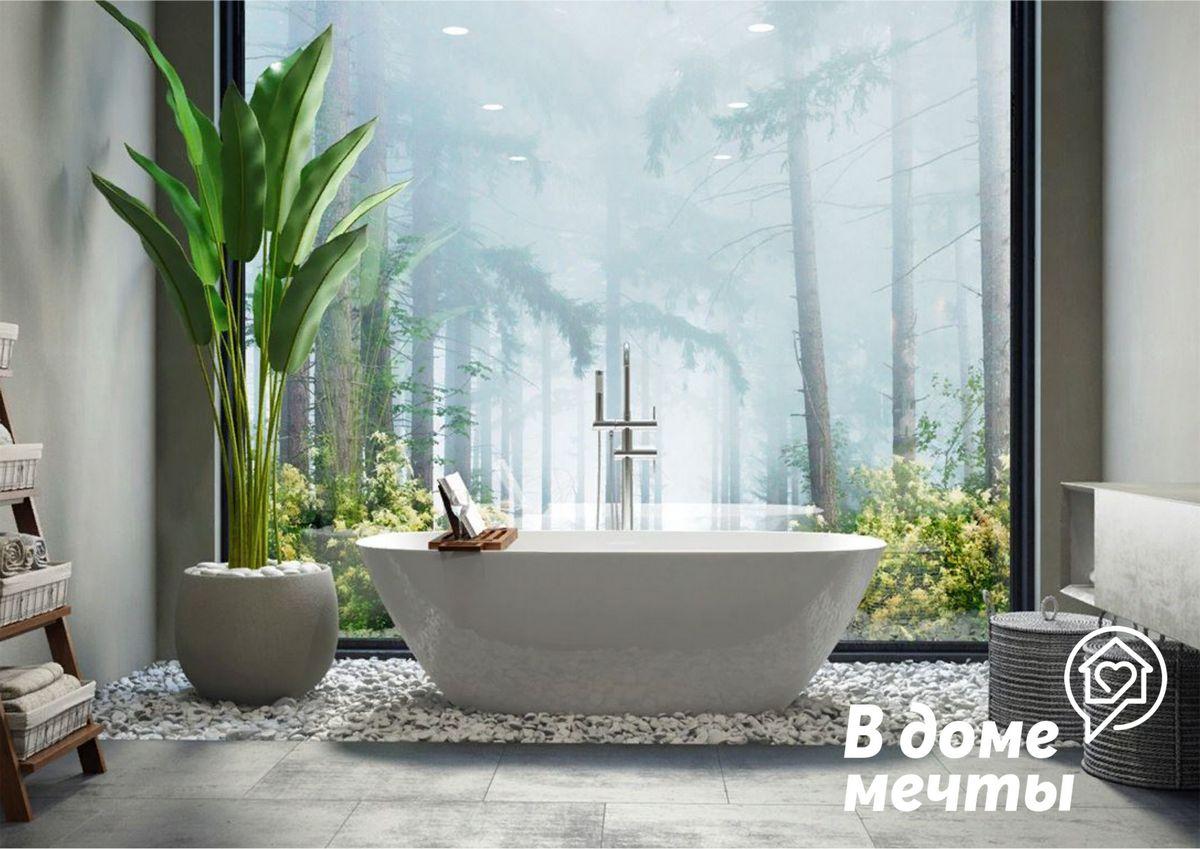 7 лучших растений для ванной комнаты: красота и уют