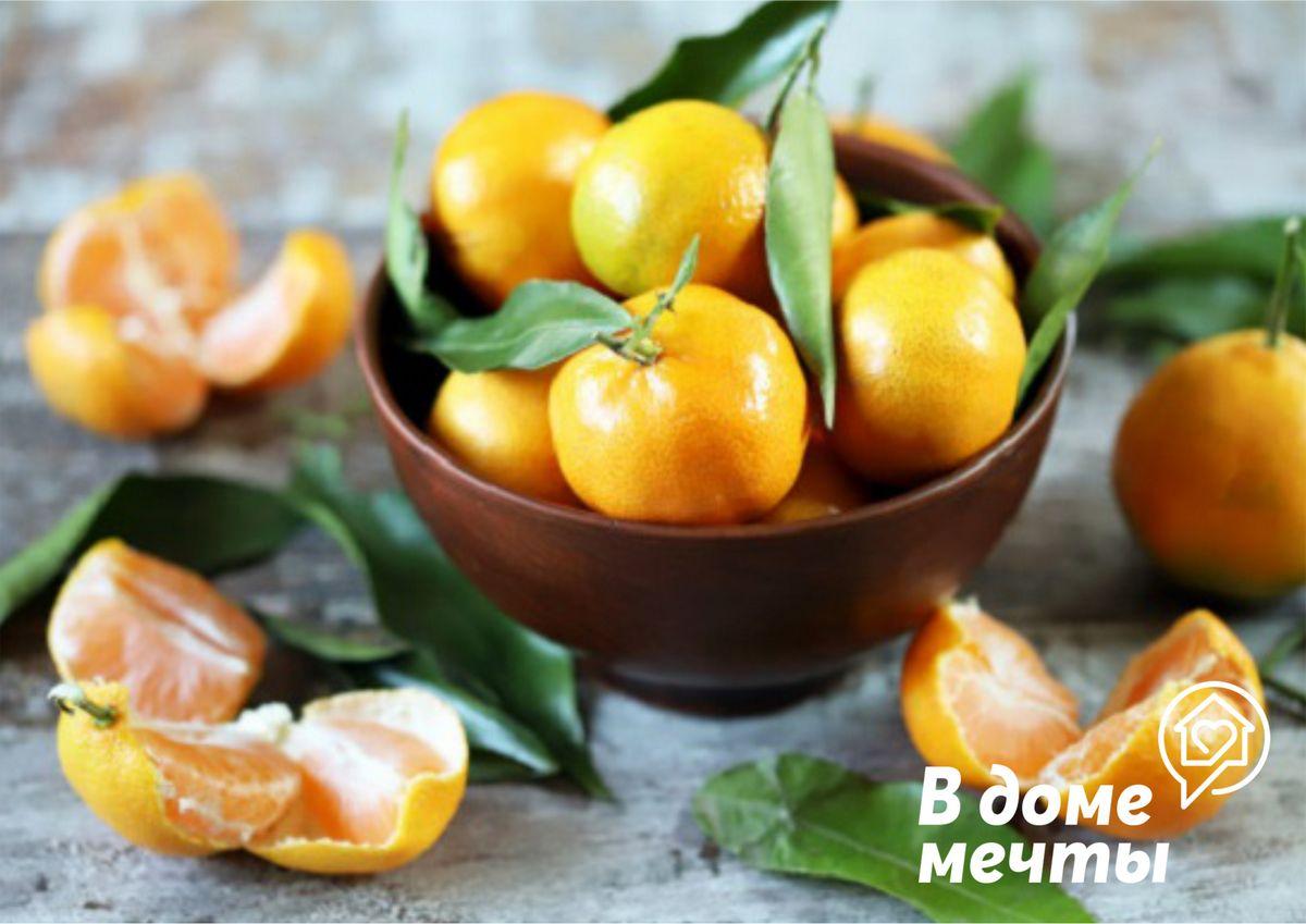 Самые вкусные виды и сорта мандарин