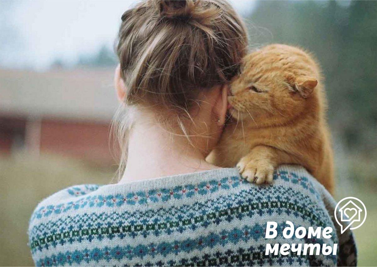5 проверенных способов понравиться кошке