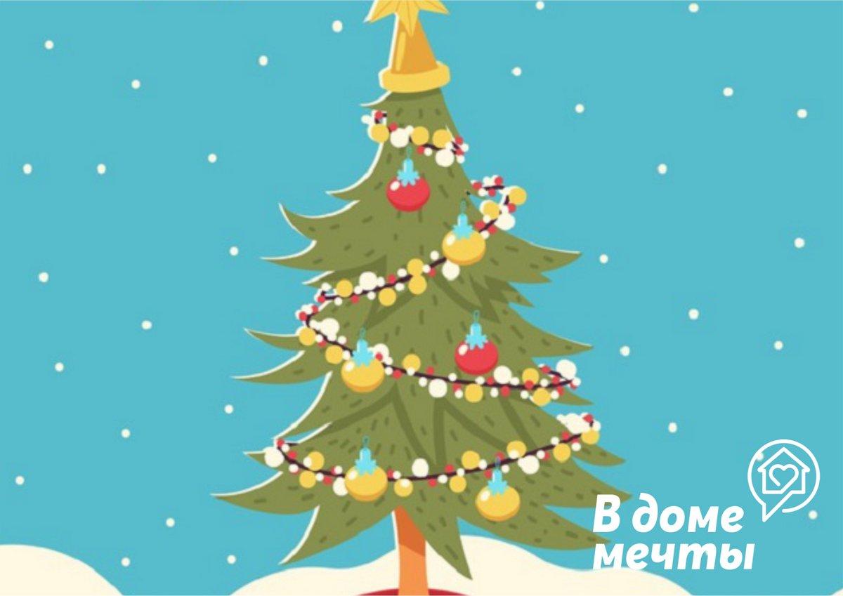 Как выбрать елку в горшке для зимних праздников