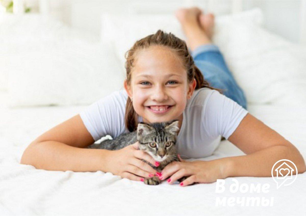 кошка - это живое существо со своими особенностями характера и эмоциями