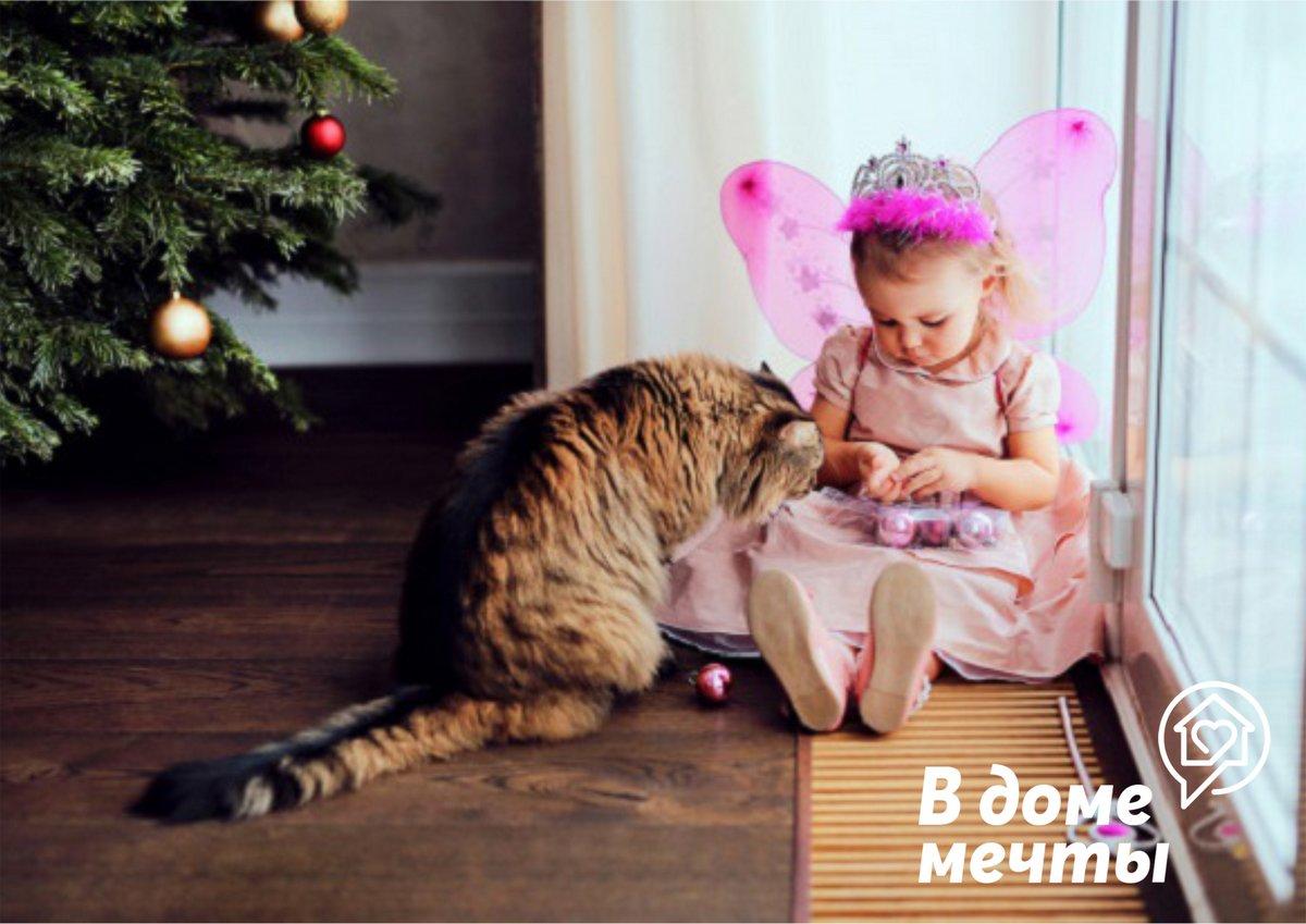 Доверительные отношения: как подружить ребенка и кошку