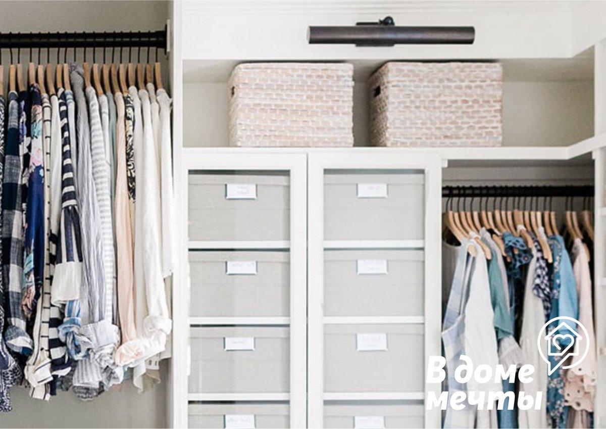 Как избавиться от моли в шкафу: десять натуральных средств