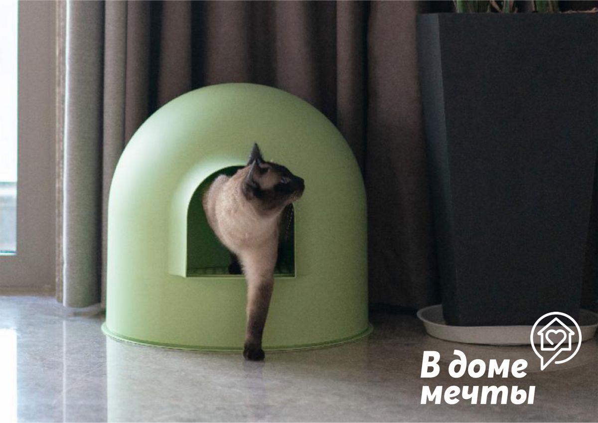 Закрытый туалет для кошки: достоинства и недостатки