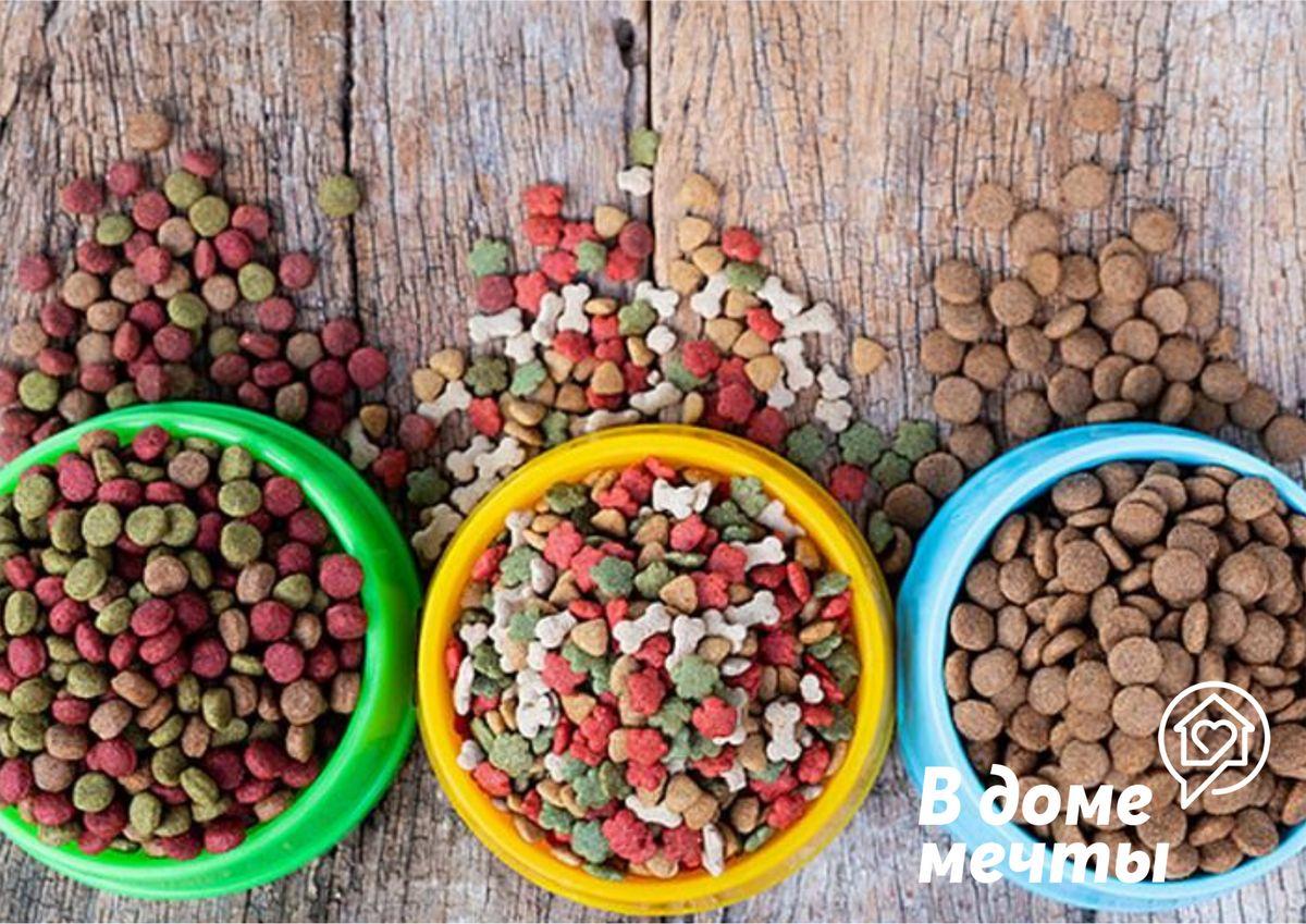 Как отучить собаку от покупного корма