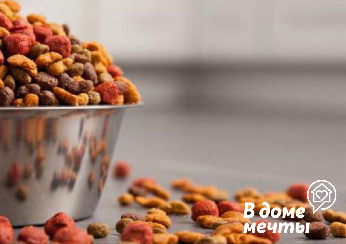 Хотите отучить домашних питомцев есть сухие корма? Тогда вам точно пригодятся эти эффективные лайфхаки!